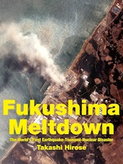 fukushima-meltdown-kindle